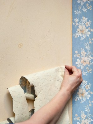 Wallpaper removal by Menjivar's Painting.